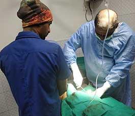 Pet-Surgery